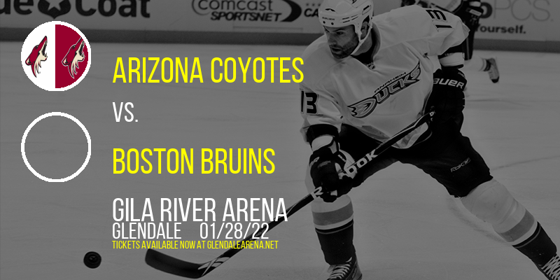 Arizona Coyotes vs. Boston Bruins at Gila River Arena